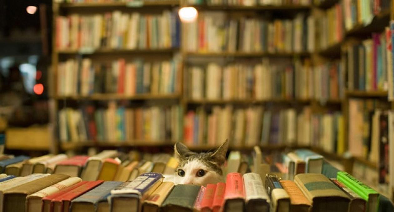 boekhandel leeuwarden tille